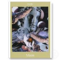 the moon card tarot