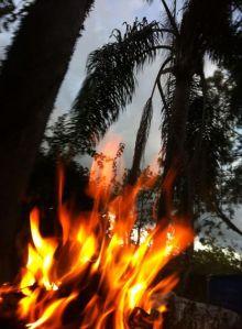fire love ritual